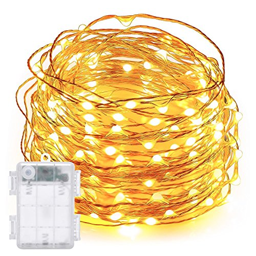 LED String Lights,DecorNova 19.7ft 60 LEDs Copper Wire String Lights IP44 Waterproof with Timer and 3AA Battery Case, Warm White (Set of 1)