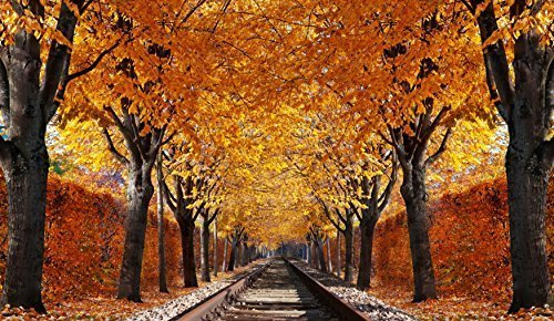 Cortesi Home Destination Unknown Tempered Glass Wall Art, 24-Inch by 36-Inch