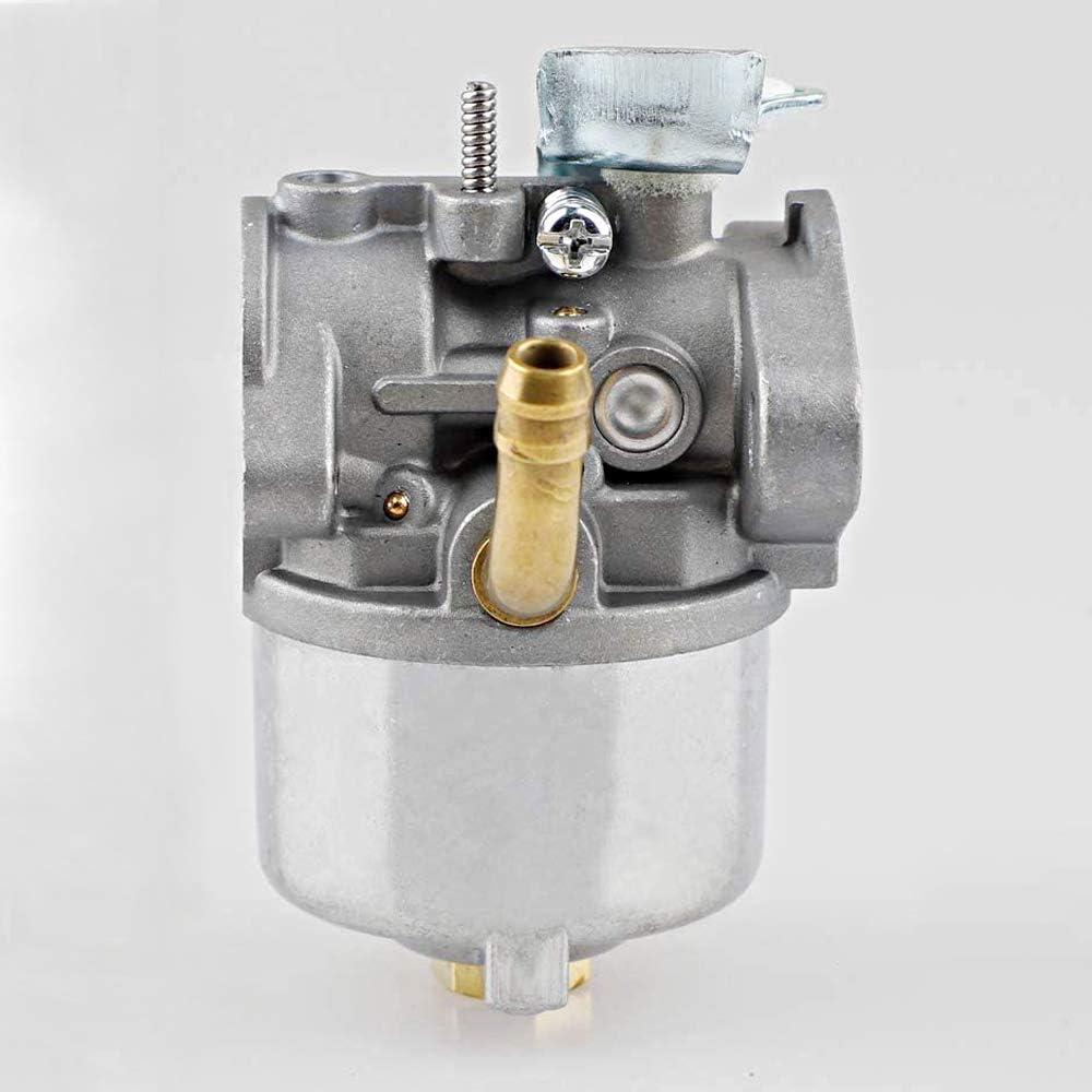 Ferilter 798917 Carburetor for Briggs /& Stratton 794587 791953 791292 12A000 12C000 12D000 Model Engines