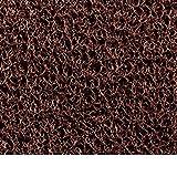 Cactus Mat 1451M-35-BRW Vinyl Coil Scraper