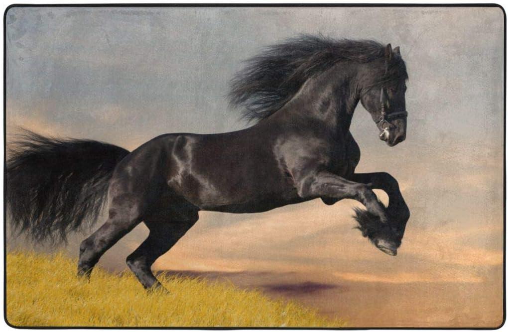 YANAIX Alfombrilla baño, Alfombra de Cocina Puerta Pies Estera Felpudo,Caballo Mustang 75X45cm