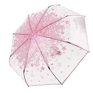Paraguas plegable, de la marca DaoRier, transparente con flores rosas