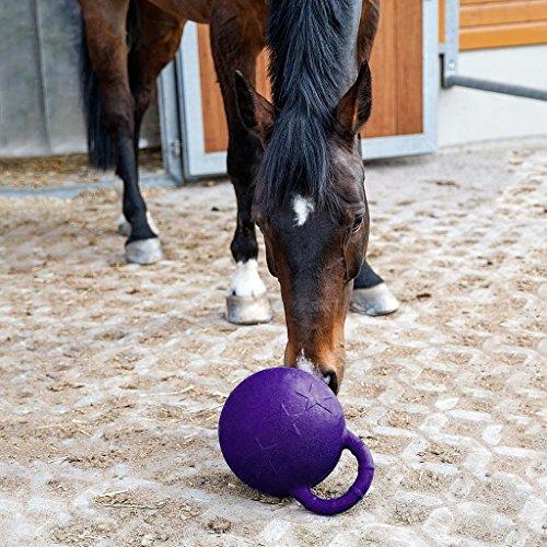Kesoto 2Pcs Pony Bounce Jolly Ball Stable Field Toy Anti-Burst Horse Soccer Balls, Green and Purple by Kesoto (Image #4)