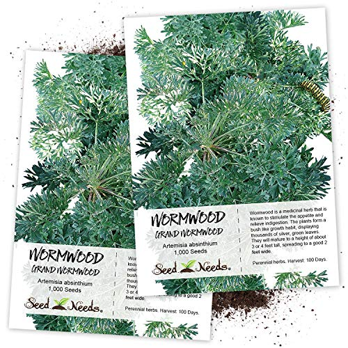 (Seed Needs, Wormwood Herb (Artemisia Absinthium) Twin Pack of 500 Seeds Each Non-GMO)