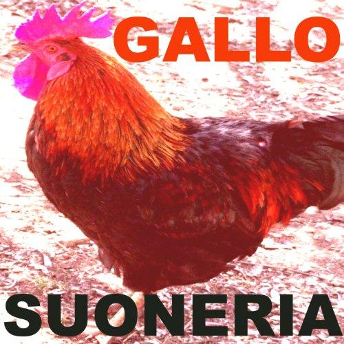 suoneria gallo