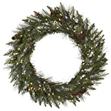 Vickerman Vallejo Mix Artificial Wreath with 50 Warm White LED Lights, 24''