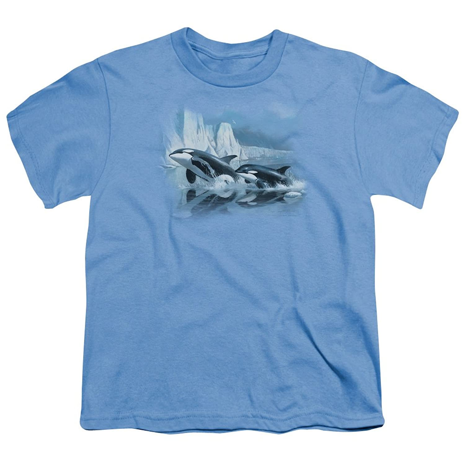 Wildlife - Youth Glaciers Edge Orcas T-Shirt