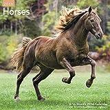 Horses Wall Calendar (2016)