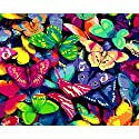 LovetheFamily 数字油絵 数字キット塗り絵 手塗り DIY絵 デジタル油絵 カラフルな蝶 40x50cm ホーム オフィス装飾の商品画像