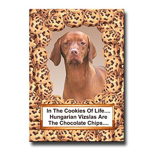 - Hungarian Vizsla Cookie Chocolate Chip Fridge Magnet