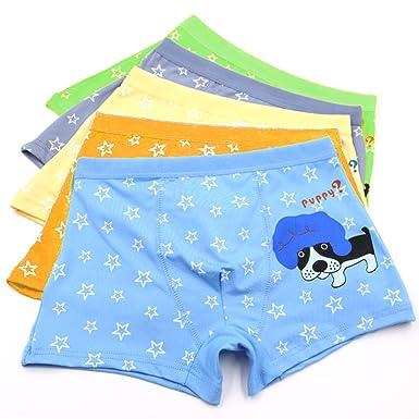JT-Amigo Boys Boxer Briefs Underwear Pack of 5