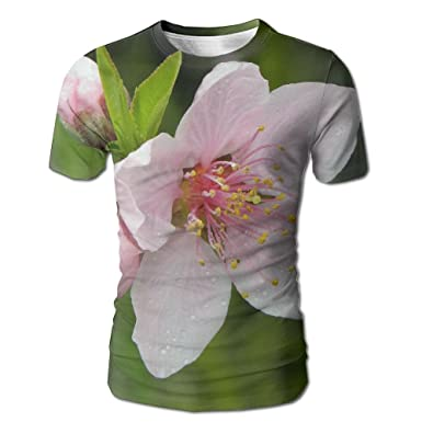 Amazon.com: Peach Blossom Mens T Shirts Design Simple Crew Neck ...