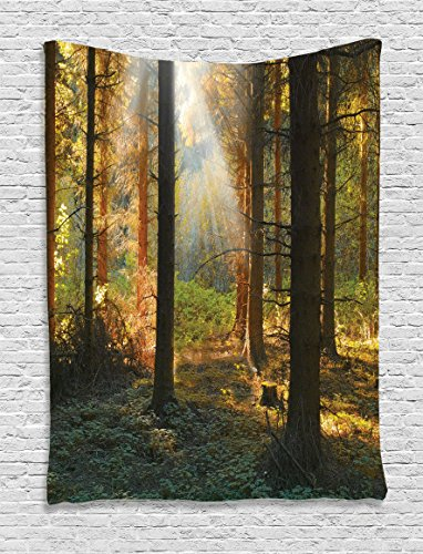 Farm House Decor Tapestry Wall Hanging by Ambesonne, Sunset View of Dark Pine Forest in Autumn Foggy Scene with Sunbeams Trunks Shadow, Bedroom Living Room Dorm Decor, 60WX80L Inches, Orange Green