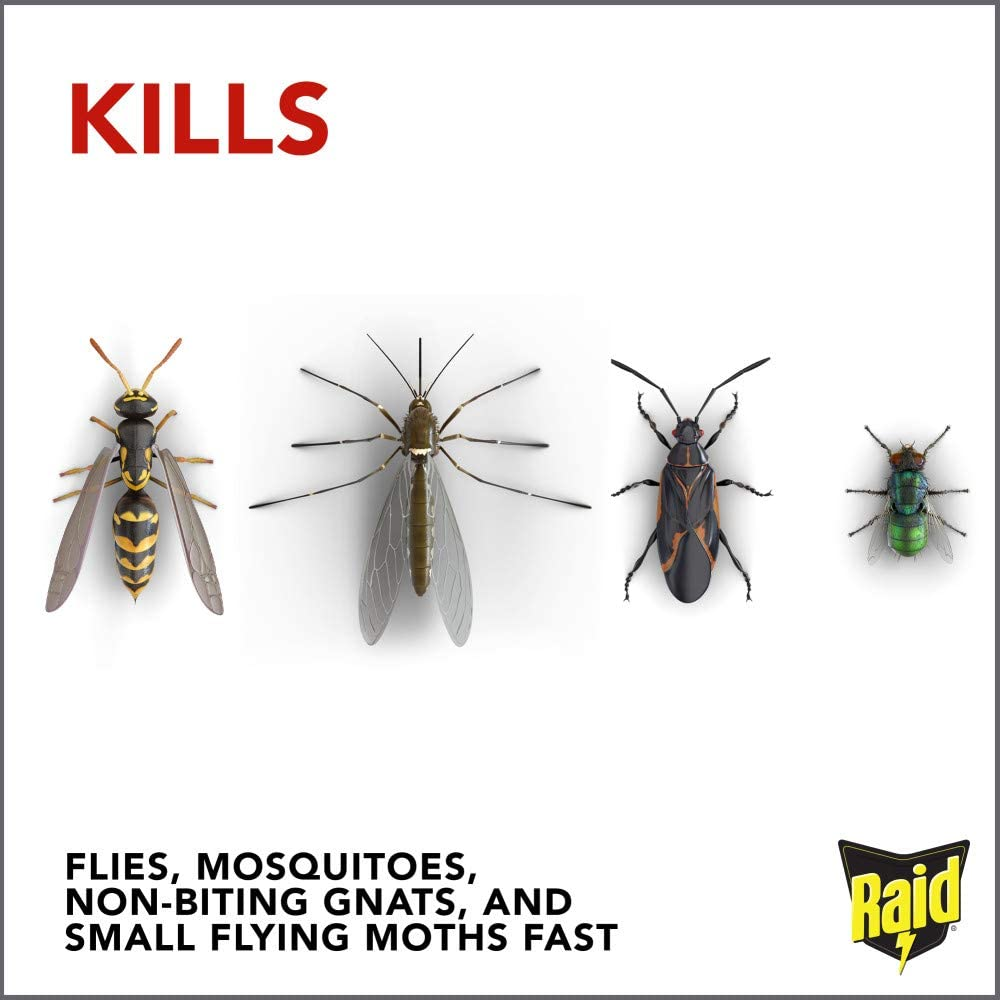 Amazon Com Raid Flying Insect Killer Kills Flies And Mosquitoes