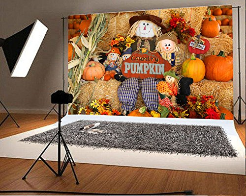 Laeacco 7x5FT Vinyl Backdrop Fall Decorations Holiday Festival Party Photography Background Multicolored Pumpkins Scarecrow County Pumpkins Flowers Toy Background Children Portrait -