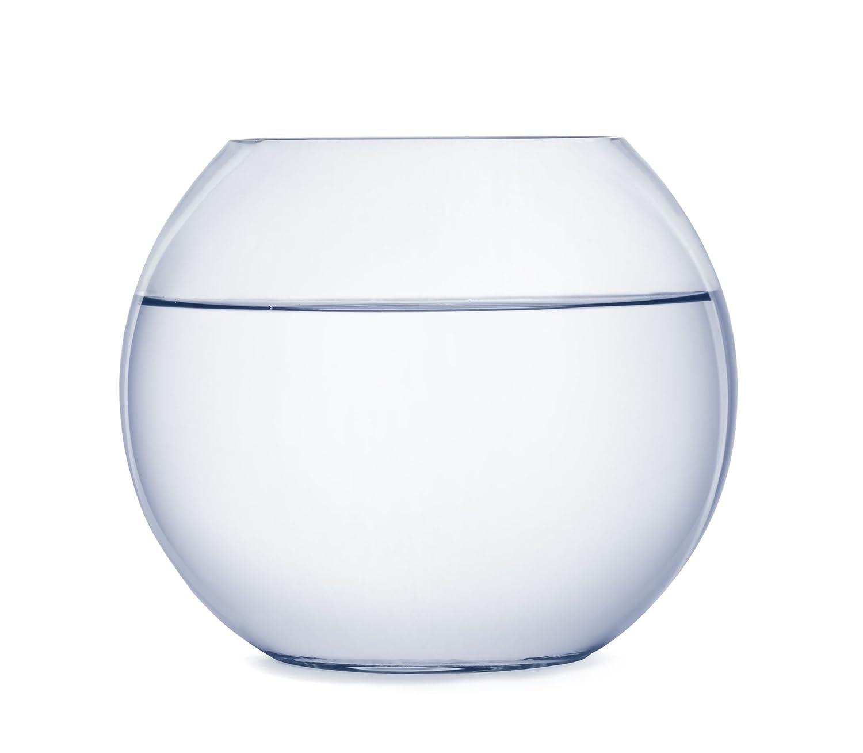 SACHI 花瓶 ガラス水槽 幅15cm×高さ12cm