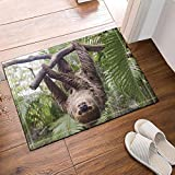 GoHeBe Animal Decor The Sloth Hung on the Tree During the Day Bath Rugs Non-Slip Doormat Floor Entryways Outdoor Indoor Front Door Mat Kids Bath Mat 15.7x23.6in Bathroom Accessories