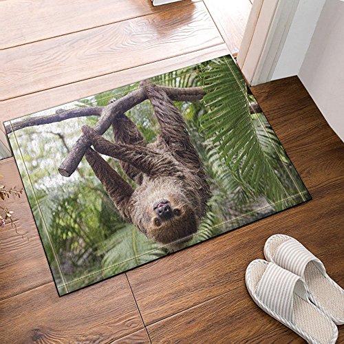 GoHeBe Animal Decor The Sloth Hung on the Tree During the Day Bath Rugs Non-Slip Doormat Floor Entryways Outdoor Indoor Front Door Mat Kids Bath Mat 15.7x23.6in Bathroom Accessories by GoHeBe