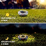 Solar Ground Lights, 8 LED Waterproof Disk Solar