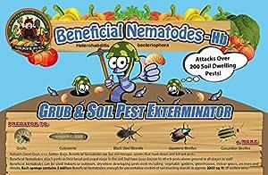 25 Million Live Beneficial Nematodes Hb - Soil Pest Exterminator