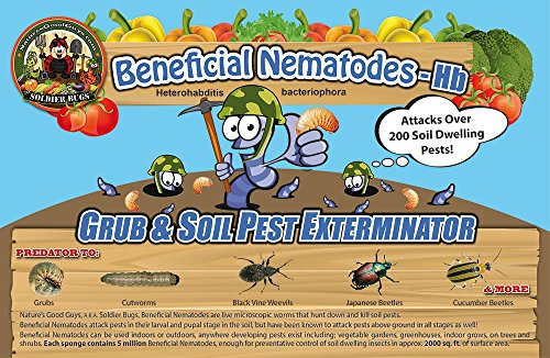 Grub Guard (10 Million Live Beneficial Nematodes Hb - Soil Pest)