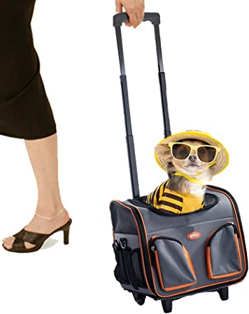 Portable Luggage Duffel Bag Singer Cat Travel Bags Carry-on In Trolley Handle