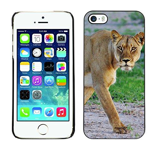 Premio Sottile Slim Cassa Custodia Case Cover Shell // F00015842 Lionne // Apple iPhone 5 5S 5G