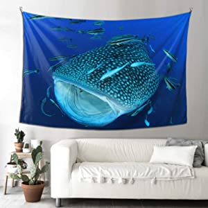 WHIOFE Outdoor Art Wall Decor Philippine Whale Shark Tapestry for Women Wall Art Farmhouse Decor 90x60 Inches(229x152cm) Wall Hanging Art Home for Living Room Bedroom