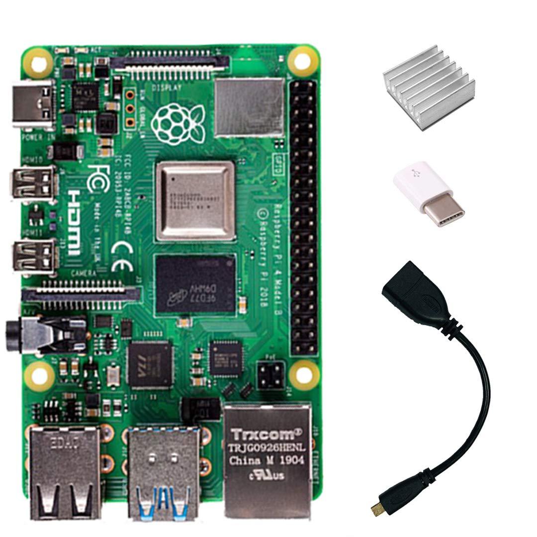 Raspberry Pi 4 Model B 1GB RAM with HDMI Female to Micro HDMI Male Adapter-USB-USB-C Adapter-Heatsink