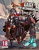 Borderlands 2 - Mechromancer Pack  DLC [PC Steam Code]