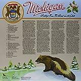 MICHIGAN [Vinyl]