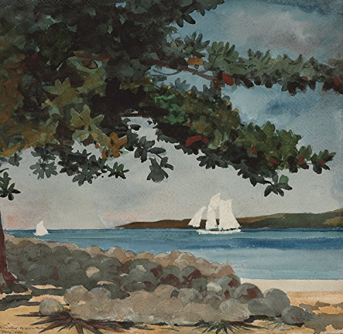 Winslow Homer - Nassau, Water and Sailboat, Size 24x26 inch, Gallery wrapped canvas art print wall décor