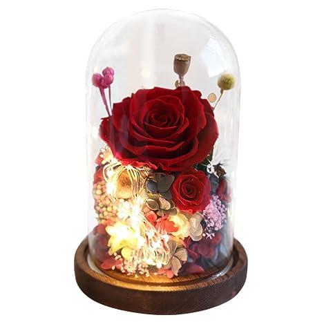 Amazon.com: XJ&DD Nunca se ha casado con flores de rosas ...
