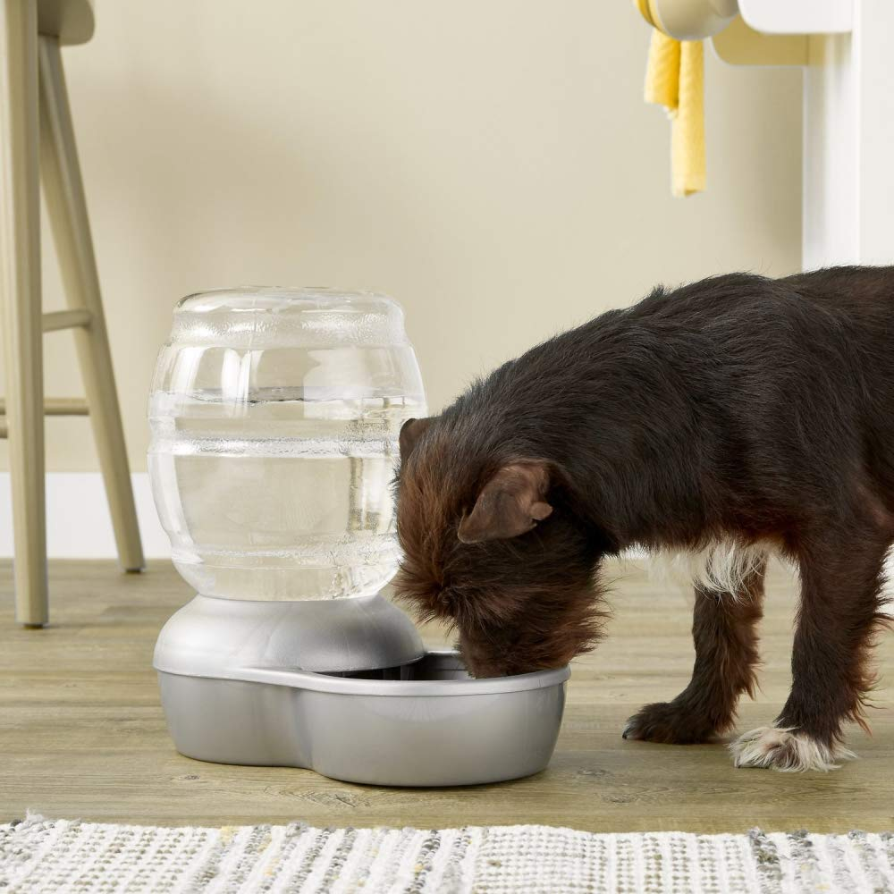 Petmate Replendish Gravity Waterer with Microban Cat and Dog Water Dispenser 4 Sizes