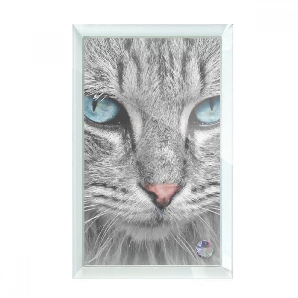 beatChong Grey Cat Animal Wild Stare Blue Eyes Desktop Crystal Art Painting Glass Artwork Decoration 7x5''
