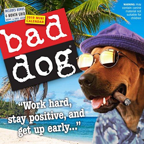 - Bad Dog Mini Wall Calendar 2019