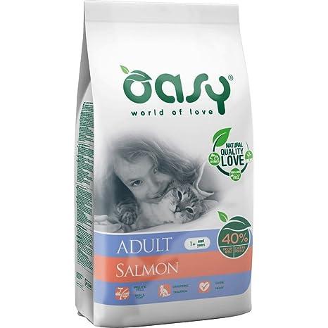OASY comida seca para gatos para los 300gr de salmón Comida seca gatos croquetas