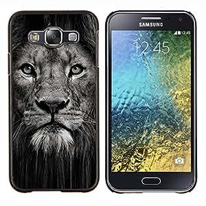 TECHCASE---Cubierta de la caja de protección para la piel dura ** Samsung Galaxy E5 E500 ** --león poderoso animal cubo gato grande