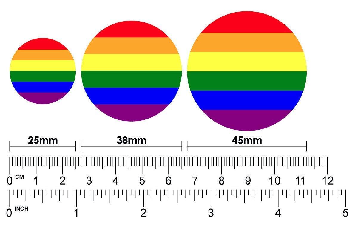 1 x LGBT Gay Pride Flag Anstecknadel oder Magnet W/ÄHLEN SIE AUS 3 GR/ÖSSEN