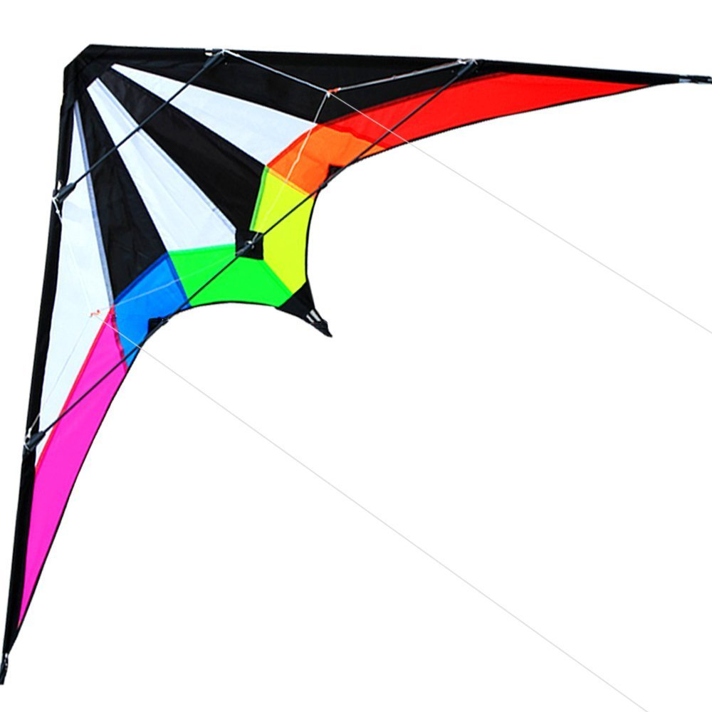 Hengda kite 70インチ/48インチ スタントカイト アウトドアスポーツ 楽しいおもちゃ デュアルラインスポーツカイト カイトラインとバッグ付き B01N4GTXPP Lightning-48 Inch  Lightning-48 Inch