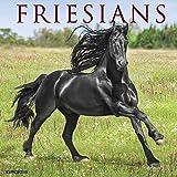 Friesians 2020 Calendar