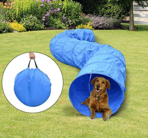 Globe House Products GHP 16-Feet Blue 210D Oxford Polyester Water Resistant Pet Tunnel Tube with Bag by Globe House Products