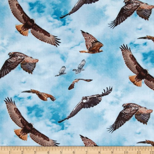 North American Wildlife Red Tail Hawk Blue Fabric By The Yard (Red Tail Hawk Feathers compare prices)