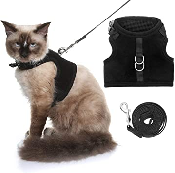 Amazon.com: Koltail - Arnés para gato a prueba de caídas ...