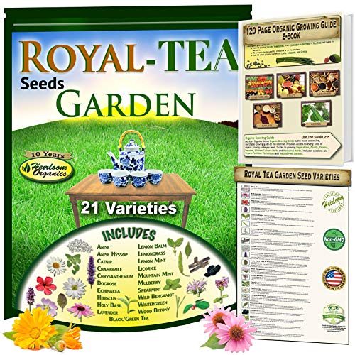 Royal Tea Seeds Garden: 21 Heirloom Collection of Herbal Tea Varieties, Including: Anise, Holy Basil, Catnip, Chamomile, Lemon Balm, 3 Types of Mint, Lavender, Licorice, Hibiscus, Wintergreen & ()