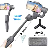 Feiyutech Vimble 2(with Mini Tripod) 3-Axis Handheld Smartphone Gimbal Stabilizer with 18CM Extension Bar for iPhone X 8 Plus 7 6 SE Samsung Galaxy S9+ S9 S8+ S8 S7 S6 Q2 Edge in Grey