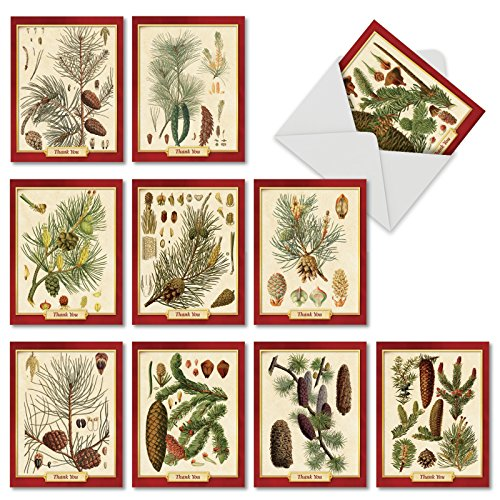 10 Assorted 'Pining for Christmas' Christmas Cards with Envelopes (Mini 4