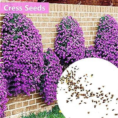 Go Garden 7A6B 228F 9350 100 Piezas RARA de adornar huerto de ...