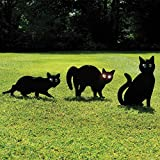 easylife lifestyle solutions Reflecting Eyes Cat Scarers (Set of 3)