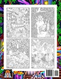 Adult Coloring Book | Magical Wildland: Coloring